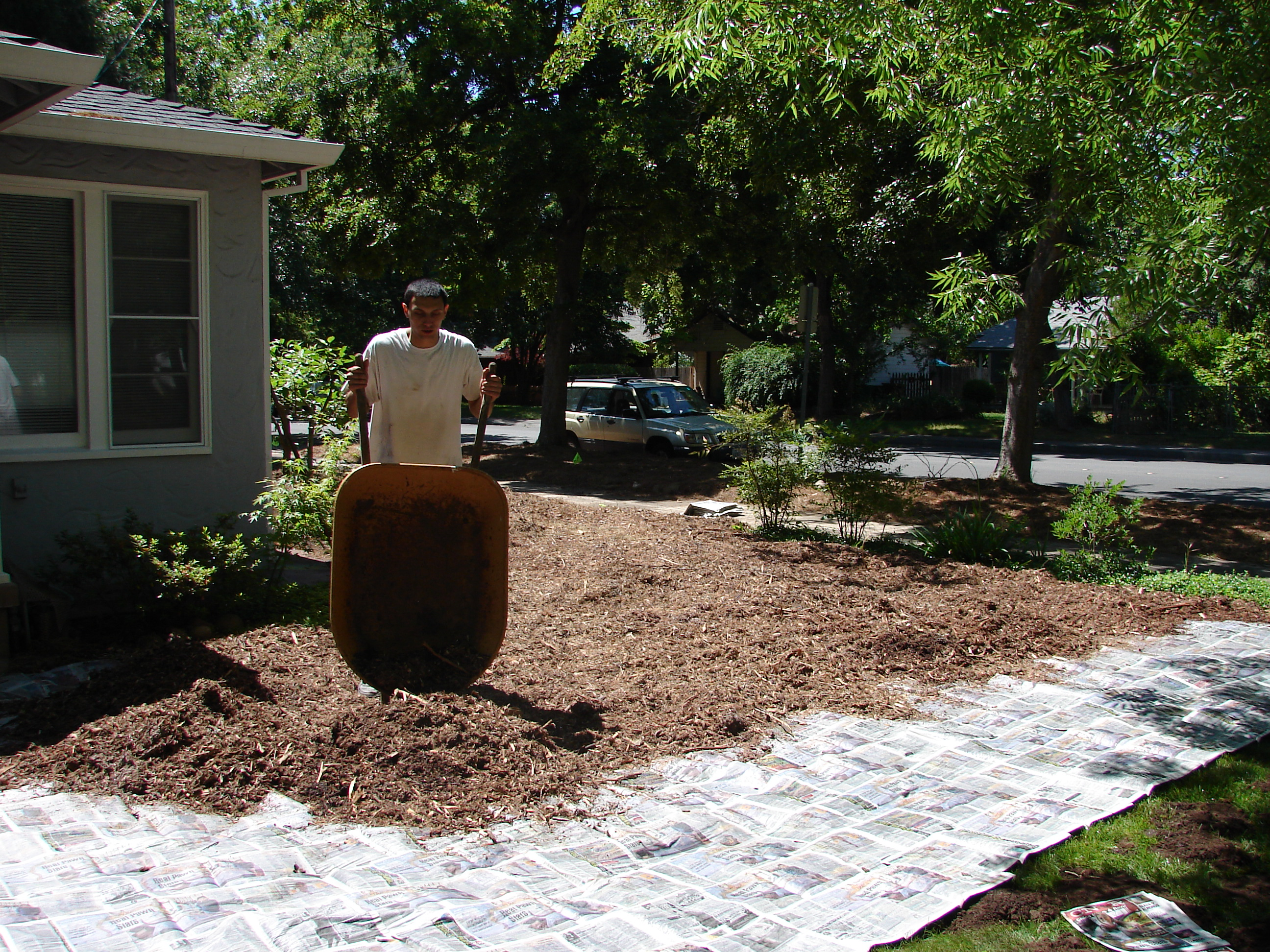Sheet Mulch With Newspaper And Wood Chips To Kill A Lawn